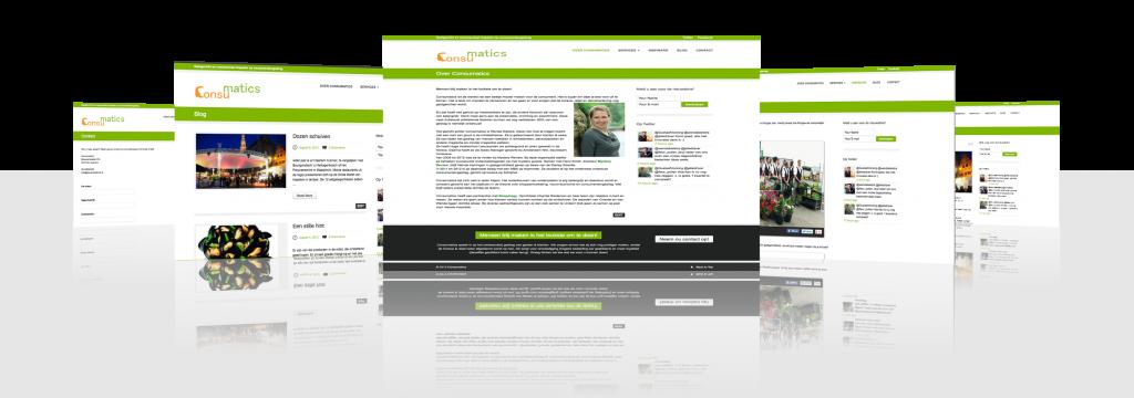 Consumatics Website door MegaExposure